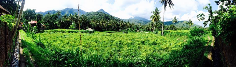 bali paisaje